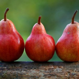 image of three red pears
